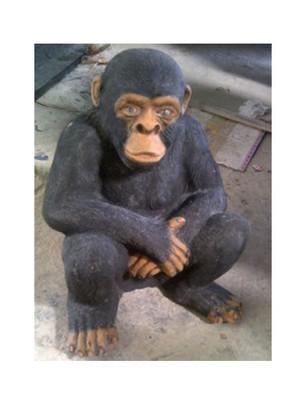 animals-chimpanzee-monkey.jpg