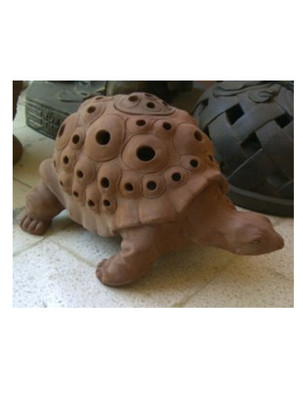animals-turtle-lantern.jpg
