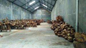teak-root-factory-300x169