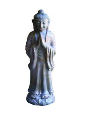 budha-stand-standing-buddha-praying-sps.jpg