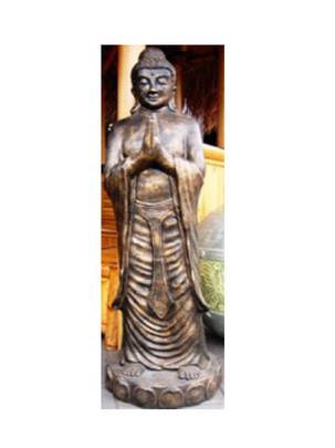 budha-stand-standing-buddha-praying-tm10a.jpg