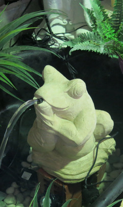 frog-water-feature-stone.jpg